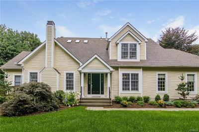 Armonk Single Family Home For Sale: 49 Agnew Farm Road