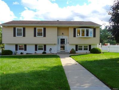 Washingtonville Single Family Home For Sale: 51 Decker Drive