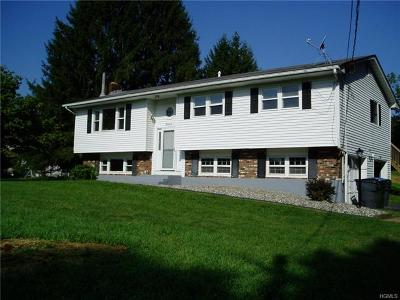 Chester Single Family Home For Sale: 22 Lakeview Drive