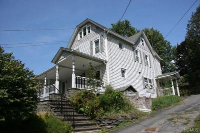 Callicoon, Callicoon Center Single Family Home For Sale: 4296 State Route 17b