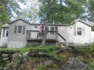 Wurtsboro Single Family Home For Sale: 65 Sunrise Trail