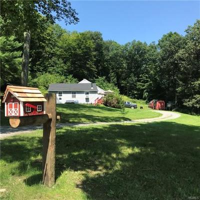 Dover Plains Single Family Home For Sale: 32 Cooperstown Road
