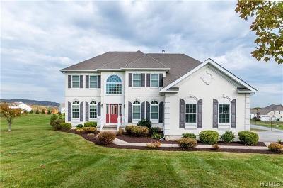Newburgh Single Family Home For Sale: 43 Devito Drive