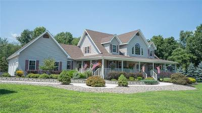 Wallkill Single Family Home For Sale: 85 Forest Road