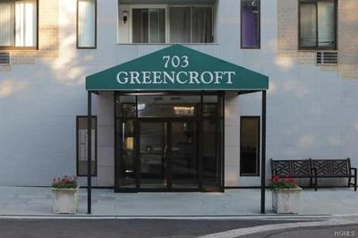 New Rochelle Condo/Townhouse For Sale: 703 Pelham Road #304