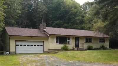 Woodbourne NY Single Family Home For Sale: $99,900
