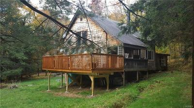 Neversink, Grahamsville, Denning Single Family Home For Sale: 7 Apple Creek Road
