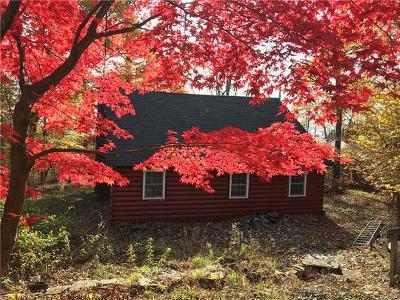 Smallwood NY Single Family Home For Sale: $74,900