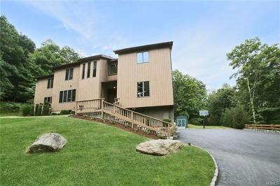 Westchester County Single Family Home For Sale: 51 Central Drive