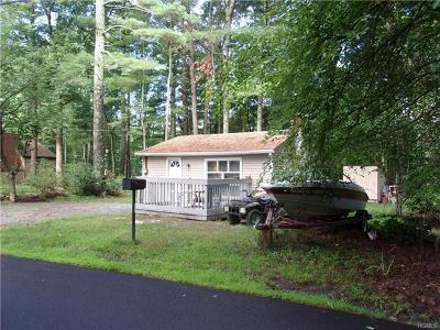 Glen Spey Single Family Home For Sale: 137 Minisink Trail