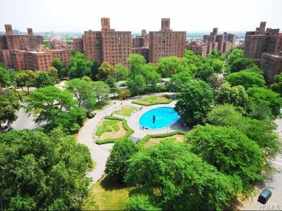 Bronx Condo/Townhouse For Sale: 1919 McGraw Avenue #11C
