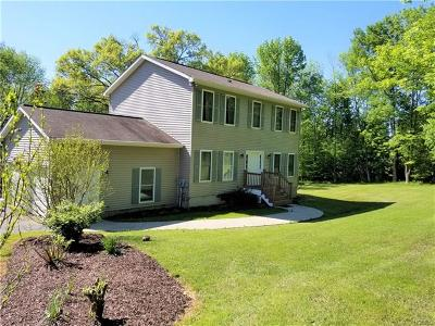 Port Jervis Single Family Home For Sale: 1267 Greenville Turnpike