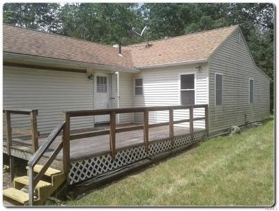 Pine Bush Single Family Home For Sale: 528 Lakeside Road