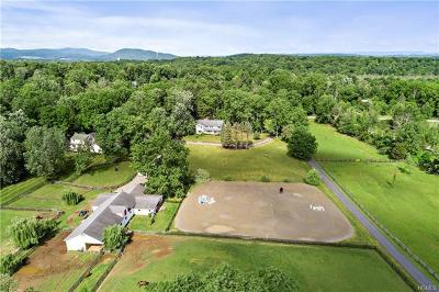 Dutchess County Single Family Home For Sale: 171 Blue Hill Road