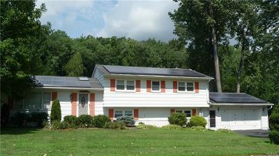 Ellenville Single Family Home For Sale: 67 Church Street