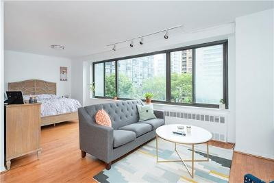 New York Condo/Townhouse For Sale: 382 Central Park West