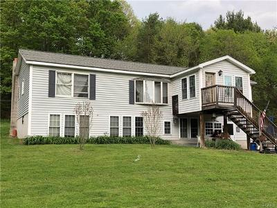 Pine Plains Single Family Home For Sale: 109 Hoffman Road