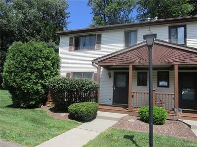 New Windsor Condo/Townhouse For Sale: 256 Quassaick Avenue #6