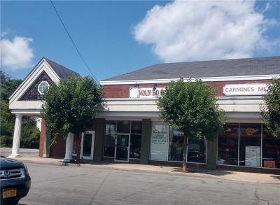 Monticello Commercial For Sale: 36 Forestburgh Road