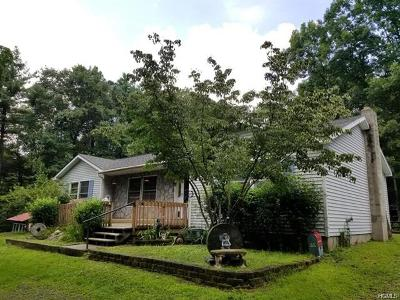 Glen Spey Single Family Home For Sale: 1054 County Route 31