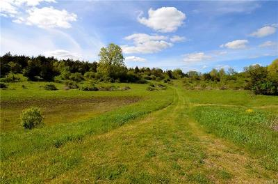 Amenia Residential Lots & Land For Sale: Lot 3 Westerly Ridge Drive
