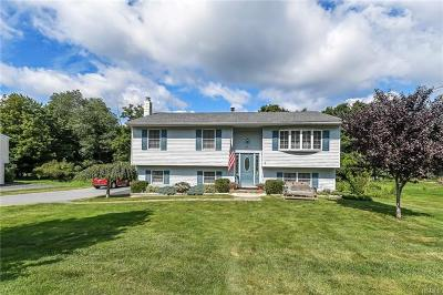 Highland Mills Single Family Home For Sale: 24 Depalma Drive