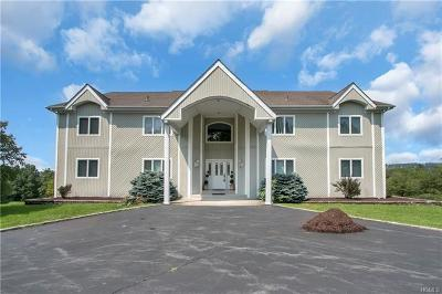 Callicoon, Callicoon Center Multi Family 2-4 For Sale: 255 Villa Roma Road