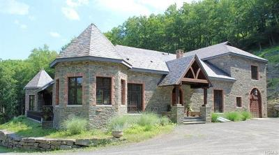 Sullivan County Single Family Home For Sale: 416 Painter Hill Road