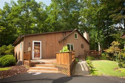 Pine Bush NY Single Family Home For Sale: $237,000