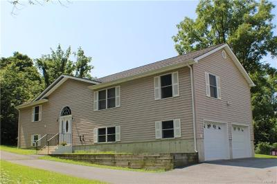 New Hampton Single Family Home For Sale: 435 County Route 56