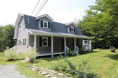 Livingston Manor NY Single Family Home For Sale: $329,000