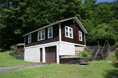 Callicoon, Callicoon Center Single Family Home For Sale: 24 Beechwoods Road