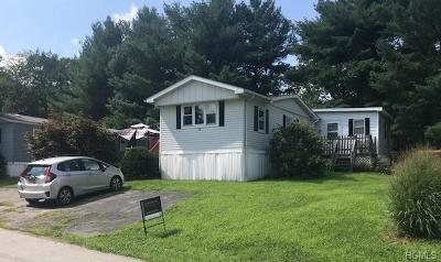Pleasant Valley NY Single Family Home For Sale: $29,000