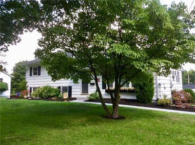 New Windsor Single Family Home For Sale: 65 Birchwood Drive