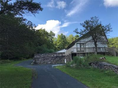 Sullivan County Single Family Home For Sale: 150 Shields Road