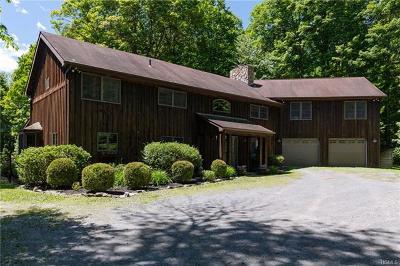 Dutchess County Single Family Home For Sale: 29 Davis Road