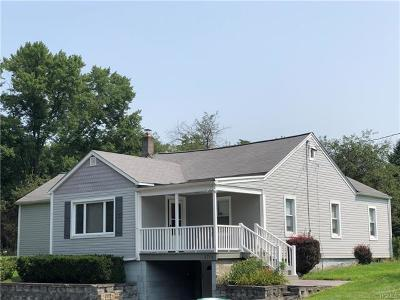 Walden Single Family Home For Sale: 2704 State Route 208