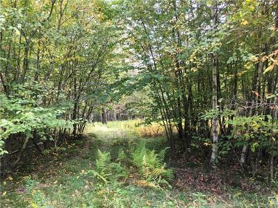 Roscoe NY Residential Lots & Land For Sale: $24,000