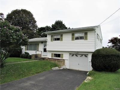 New Hampton Single Family Home For Sale: 47 Ryerson Road