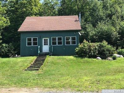 Austerlitz Single Family Home For Sale: 11344 State Route 22