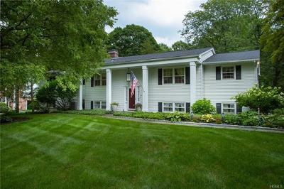 Dutchess County Single Family Home For Sale: 9 Jonathan Lane
