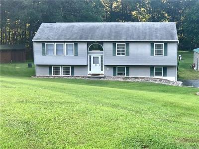 Pine Bush Single Family Home For Sale: 51 Hardenburgh Road