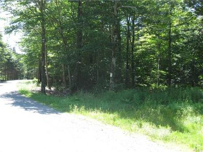 Sullivan County Residential Lots & Land For Sale: Meyer Road
