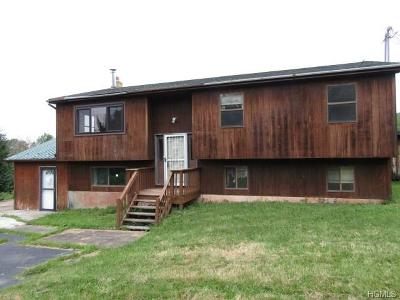 Liberty NY Single Family Home For Sale: $74,900