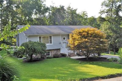 Salisbury Mills Single Family Home For Sale: 3 Forest Lane