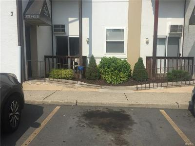 Port Jervis Condo/Townhouse For Sale: 39 Church Street #5