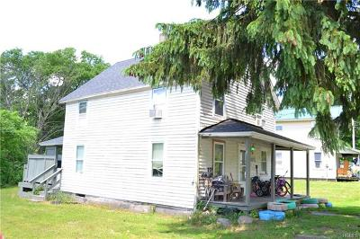 Delaware County Single Family Home For Sale: 36 Cooks Falls Road