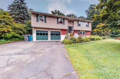 Lagrangeville Single Family Home For Sale: 287 Walsh Road