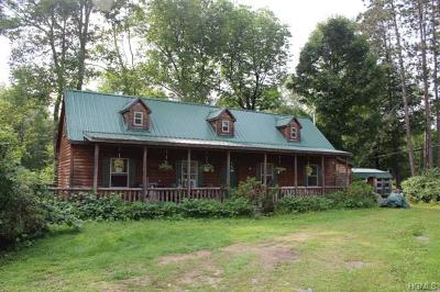 Livingston Manor NY Single Family Home For Sale: $249,900