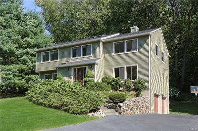 Briarcliff Manor Single Family Home For Sale: 7 Patricia Lane